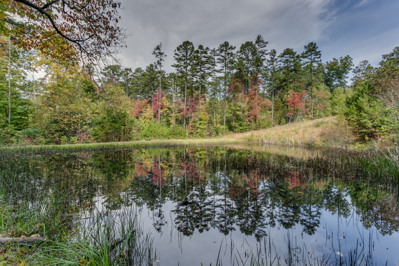 On Golden Pond- Flat Rate Pricing Cabin Rental
